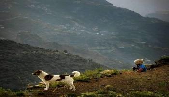 صور من اليمن: جبل حبشي، محافظة تعز، جنوبي غرب البلاد