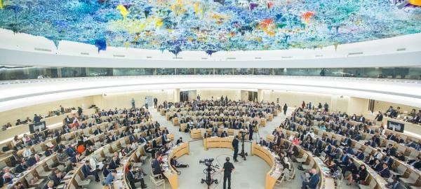 منظمة: مجلس حقوق الانسان منح الإفلات من العقاب ضوءا اخضر في اليمن